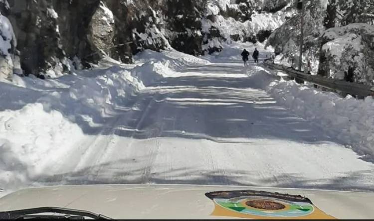 Heavy Snowfall: 900 Roads In Himachal Pradesh Blocked Due To Snow, Keylong Shivers At Minus 17.6 Degrees Celcius